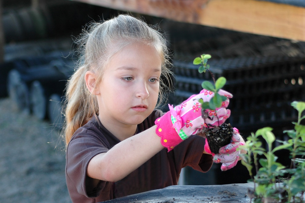 the_manor_trust_education_gardening